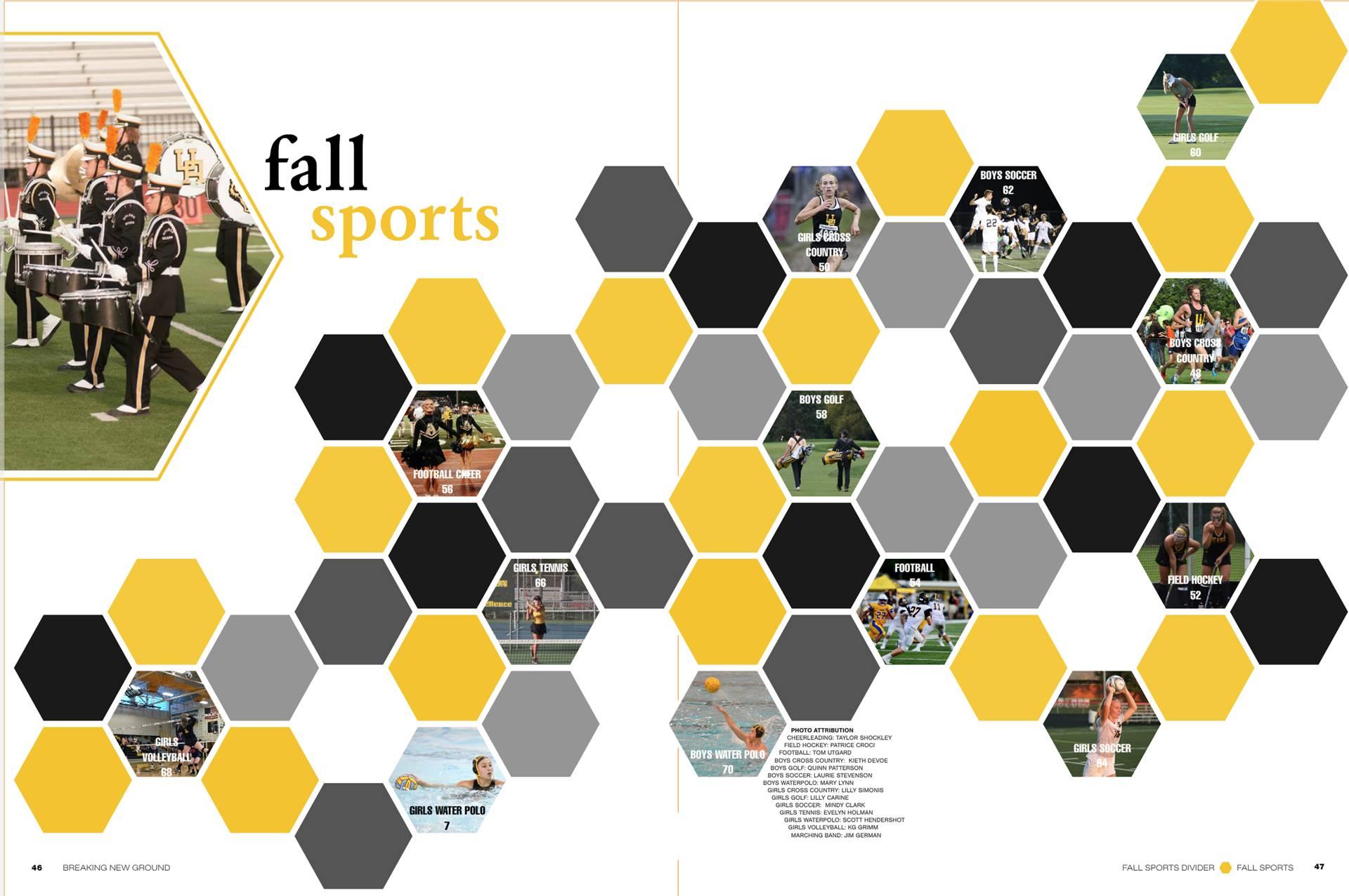 Fall Sports Divider